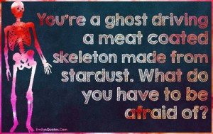 You're a ghost driving a meat coated skeleton made of stardust. What do you have to be afraid of?