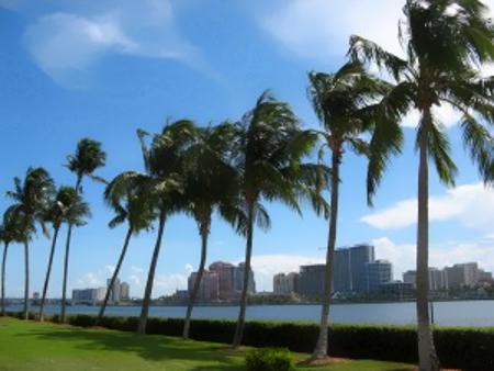 Downtown_Florida_2